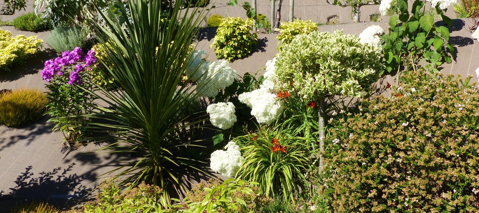jardin arboré Villedieu les Poêles