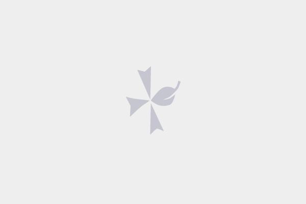 P2n  FESTIVAL DES PAPILLONS DE NUIT 2018